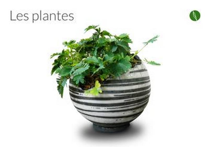 Amandine Poulain céramique - La Bouilladisse (13) - pour les plantes et les oiseaux, mais aussi les apéros et déjeuners